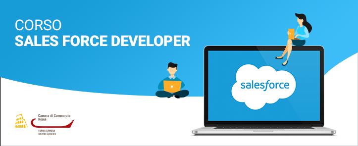 Sales Force Developer