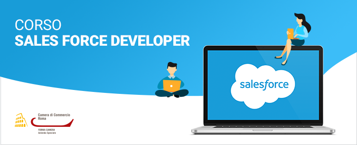 Sales Force Developer